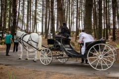 Wedding in Dunkeld