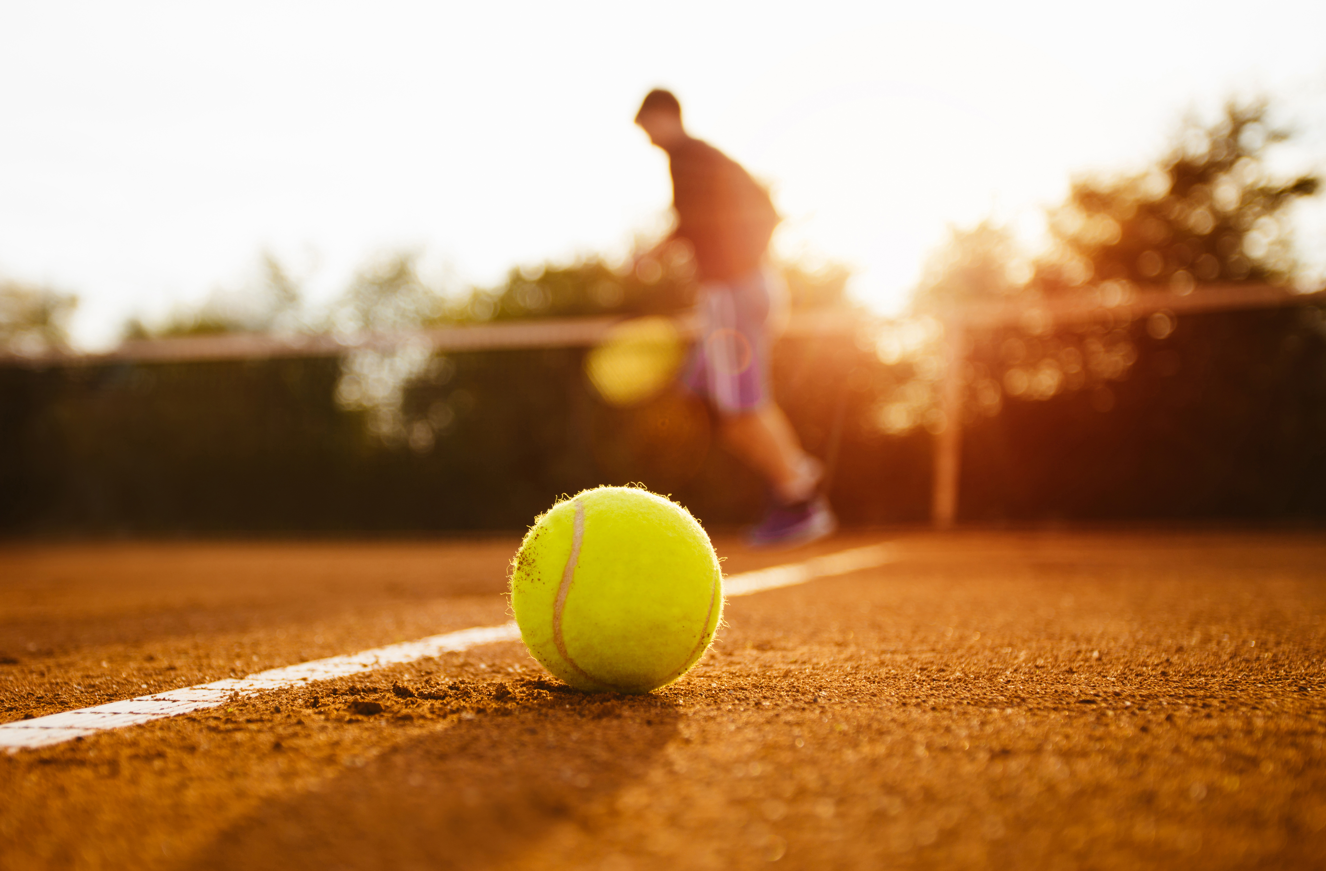 Challenge your family to a round of tennis