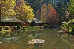 Dunkeld Country & Equestrian Estate offers beautiful scenery right throughout the year