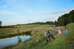 With many trout dams and animals roaming the estate, you'll feel part of nature in no time